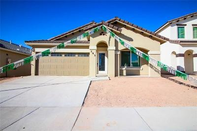 El Paso TX Single Family Home For Sale: $187,250