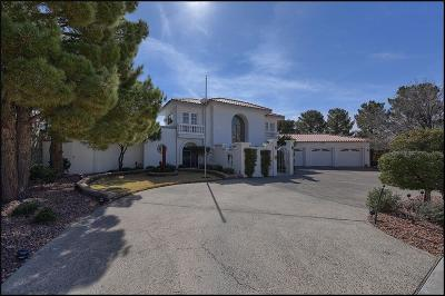 El Paso Single Family Home For Sale: 420 Golden Springs