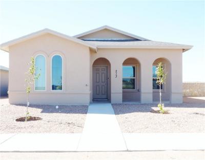 Horizon City Single Family Home For Sale: 225 Lago Maggiore Street