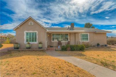 El Paso Single Family Home For Sale: 620 Ladera Road