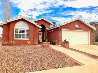 El Paso Single Family Home For Sale: 11859 Two Towers Drive