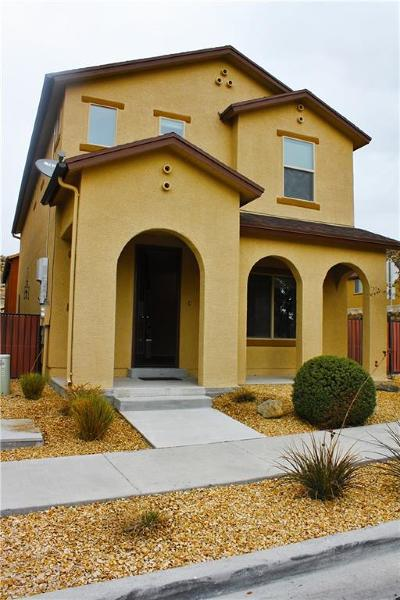 El Paso Single Family Home For Sale: 6697 Red Canyon Sage Lane