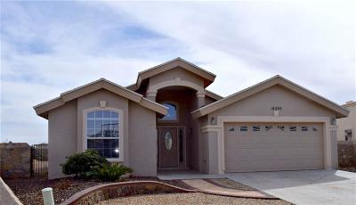Horizon City Single Family Home For Sale: 14205 Desert Yucca Place