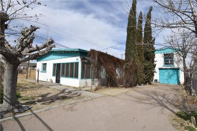 Fabens Single Family Home For Sale: 107 NW Camp