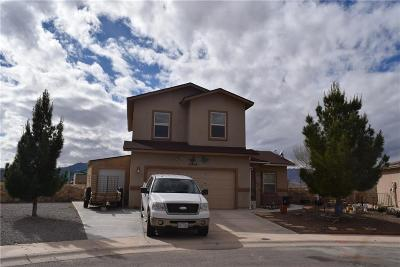 Single Family Home For Sale: 10409 Canyon Sage Drive