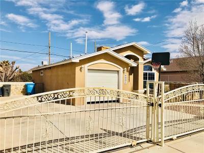 Socorro Single Family Home For Sale: 9997 Laurie Jo Lane