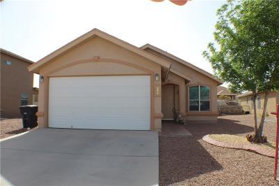 Horizon City Single Family Home For Sale: 813 Desert Moon