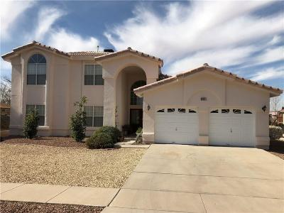 El Paso Single Family Home For Sale: 4451 Shadow Willow Drive