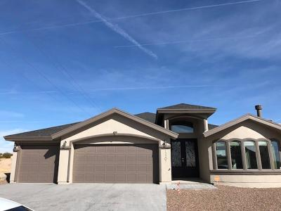 Horizon City Single Family Home For Sale: 13201 Emerald Isle Street