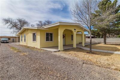 Socorro Single Family Home For Sale: 11440 Datsun Drive
