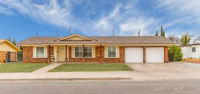 El Paso Single Family Home For Sale: 10312 Camwood Drive