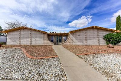 El Paso Single Family Home For Sale: 10133 Stoneway Drive
