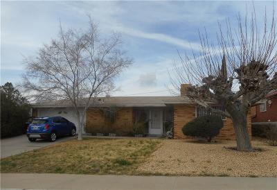 El Paso Single Family Home For Sale: 241 Carnival Drive