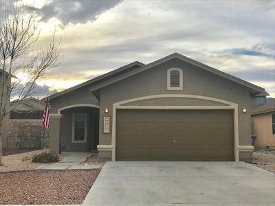 El Paso Single Family Home For Sale: 11269 Bullseye Street