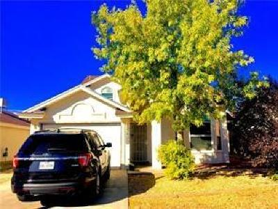 El Paso Single Family Home For Sale: 3425 Tierra Cobre Drive