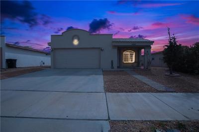Single Family Home For Sale: 14248 Desert Sunset Drive