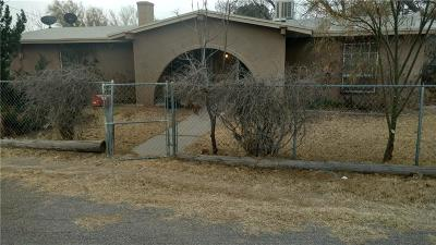El Paso Single Family Home For Sale: 8516 Winchester Road