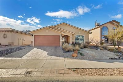 El Paso Single Family Home For Sale: 3219 Destiny Point Drive