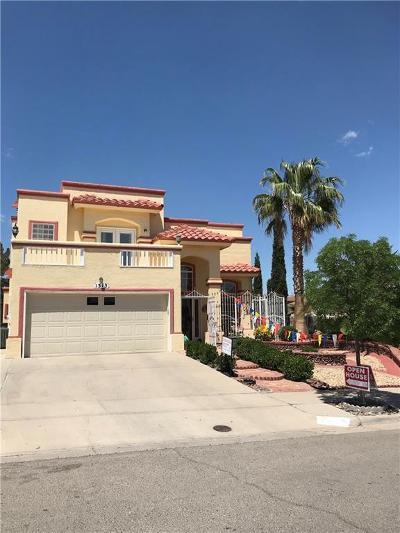 El Paso Single Family Home For Sale: 1313 Jim Paul Drive