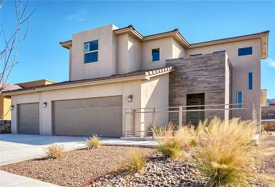 El Paso Single Family Home For Sale: 1800 Tin Star Street