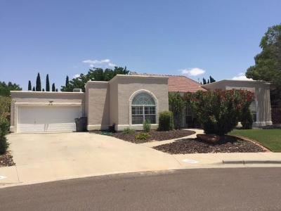 El Paso Single Family Home For Sale: 12055 Paseo Solo Lane