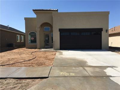 El Paso Single Family Home For Sale: 820 Nena Shapleigh Lane