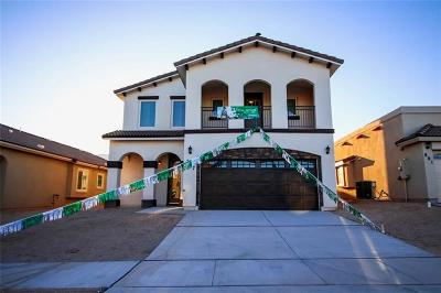 Horizon City Single Family Home For Sale: 808 Kerconell Road