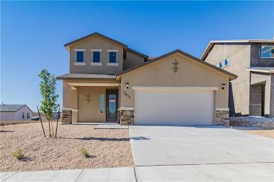 El Paso Single Family Home For Sale: 7437 Eagle Vista Drive