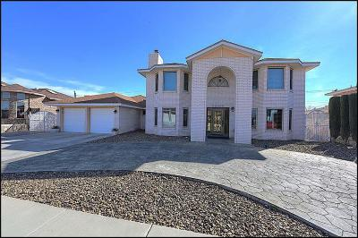 Single Family Home For Sale: 11324 Patricia Avenue
