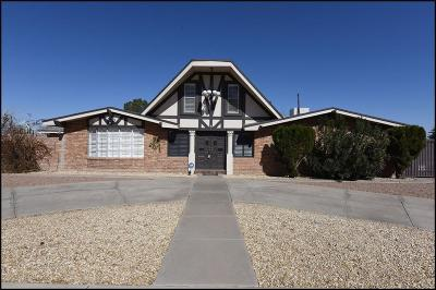 El Paso Single Family Home For Sale: 10027 Fenway