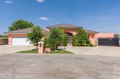 El Paso Single Family Home For Sale: 116 Calle Olaso Drive