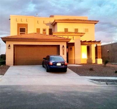 Horizon City Single Family Home For Sale: 312 Manzanita Drive