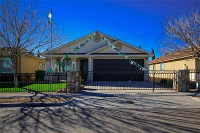 El Paso Single Family Home For Sale: 4980 Rose Elise Street