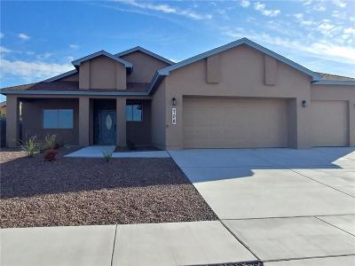 Canutillo Single Family Home For Sale: 708 Jalynn Grace Drive