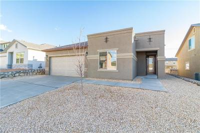 El Paso Single Family Home For Sale: 7432 Eagle Vista Drive