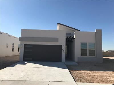 El Paso Single Family Home For Sale: 13562 Harbottle