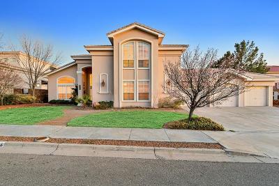 El Paso Single Family Home For Sale: 6356 La Posta Drive
