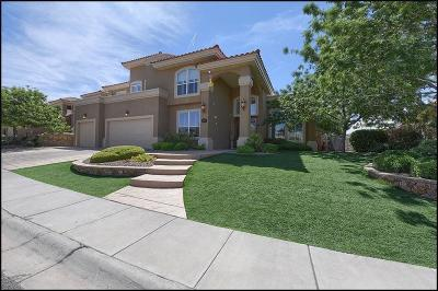 El Paso Single Family Home For Sale: 1128 Calle Lomas