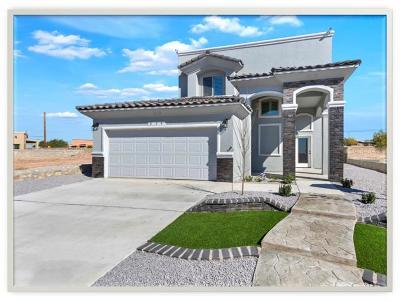 Single Family Home For Sale: 13621 Lartington Street