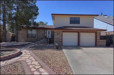 Single Family Home For Sale: 1381 Vista Granada Drive