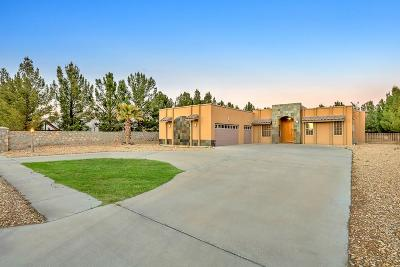 El Paso Single Family Home For Sale: 362 Wild Willow Drive