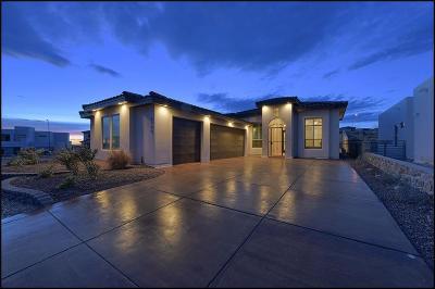El Paso Single Family Home For Sale: 6195 Franklin Dove Avenue