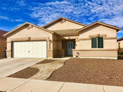 Single Family Home For Sale: 14319 Alma Point Drive