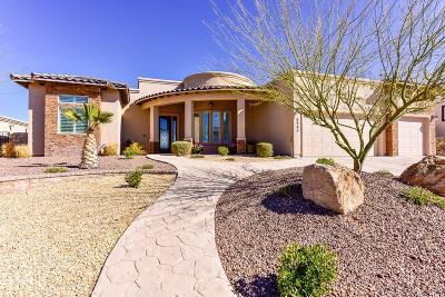 Single Family Home For Sale: 6645 Contessa Ridge Drive