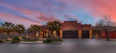 Single Family Home For Sale: 12513 Tierra Nogal Drive