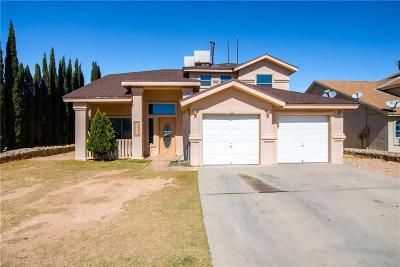 Single Family Home For Sale: 14109 Highweed Drive