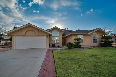 El Paso Single Family Home For Sale: 4449 Sleepy Willow Drive