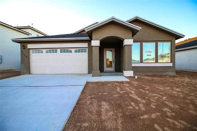 El Paso Single Family Home For Sale: 801 Nena Shapleigh Lane