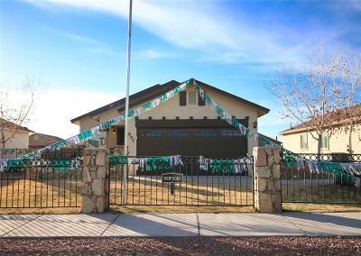 El Paso Single Family Home For Sale: 805 Nena Shapleigh Lane