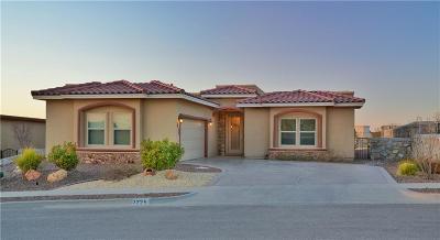 El Paso Single Family Home For Sale: 7225 Camino Del Sol